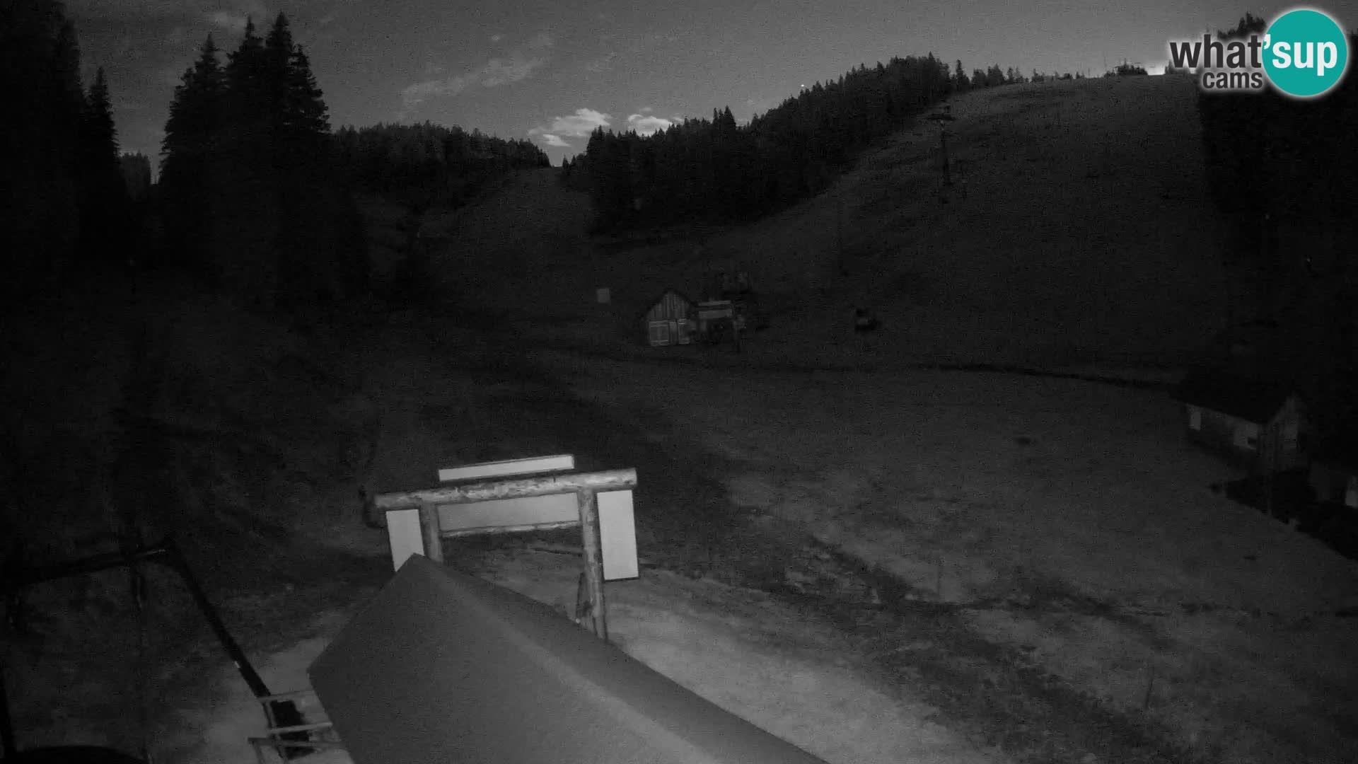 Rogla ski resort – Planja, Košuta, Jasa