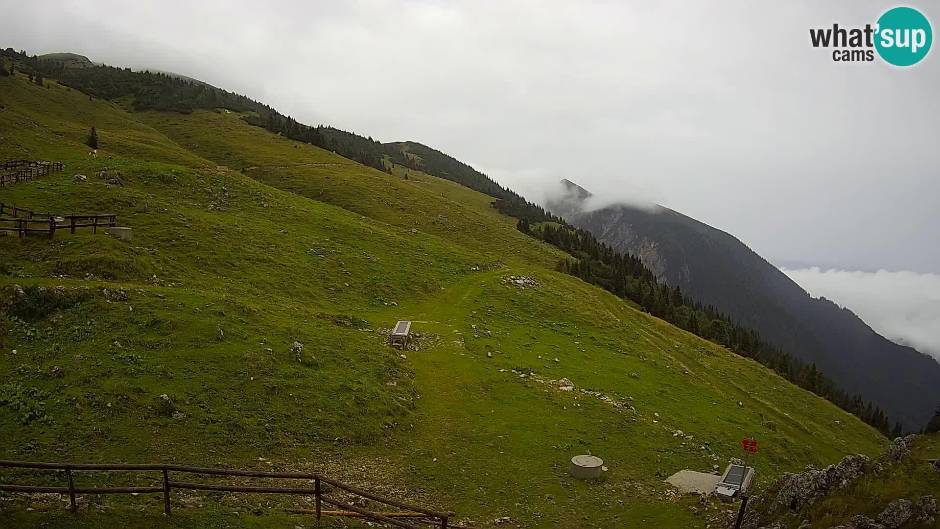 Struška nad Jesenicami spletna kamera planina Svečica (Belška planina) – Karavanke
