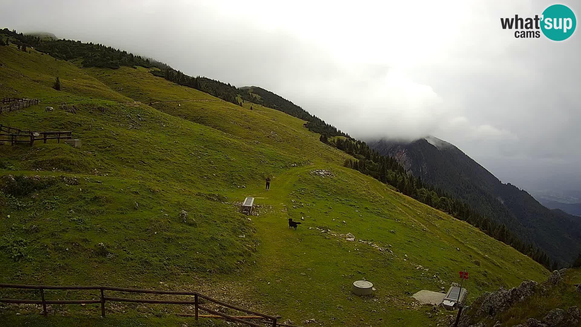 Struška nad Jesenicami camera en vivo planina Svečica (Belška planina) – Karavanke – Eslovenia
