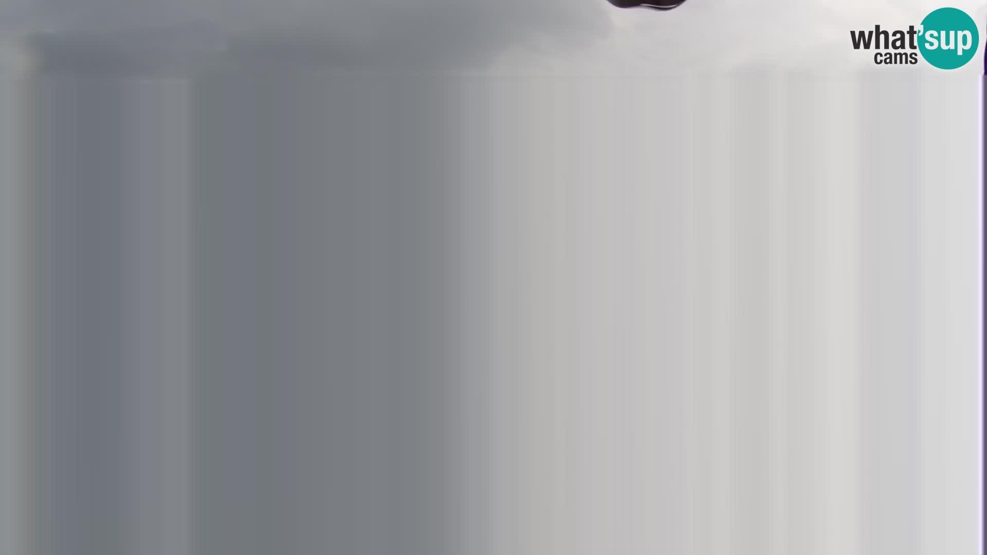 Spletna kamera Velika Planina