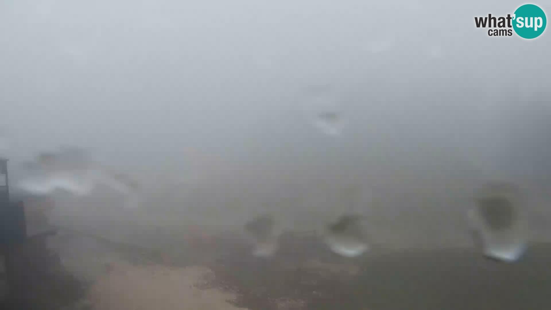 Station ski Vogel