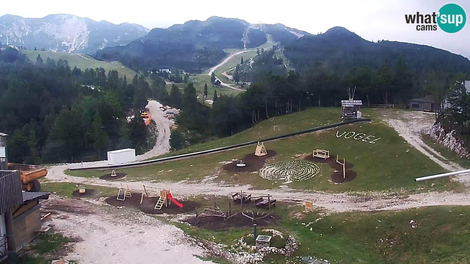 Ski resort Vogel