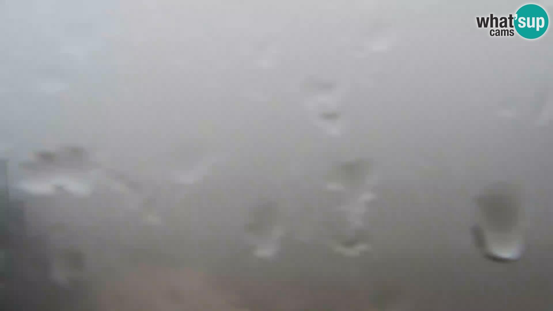 Webcam Stazione sciistica Vogel