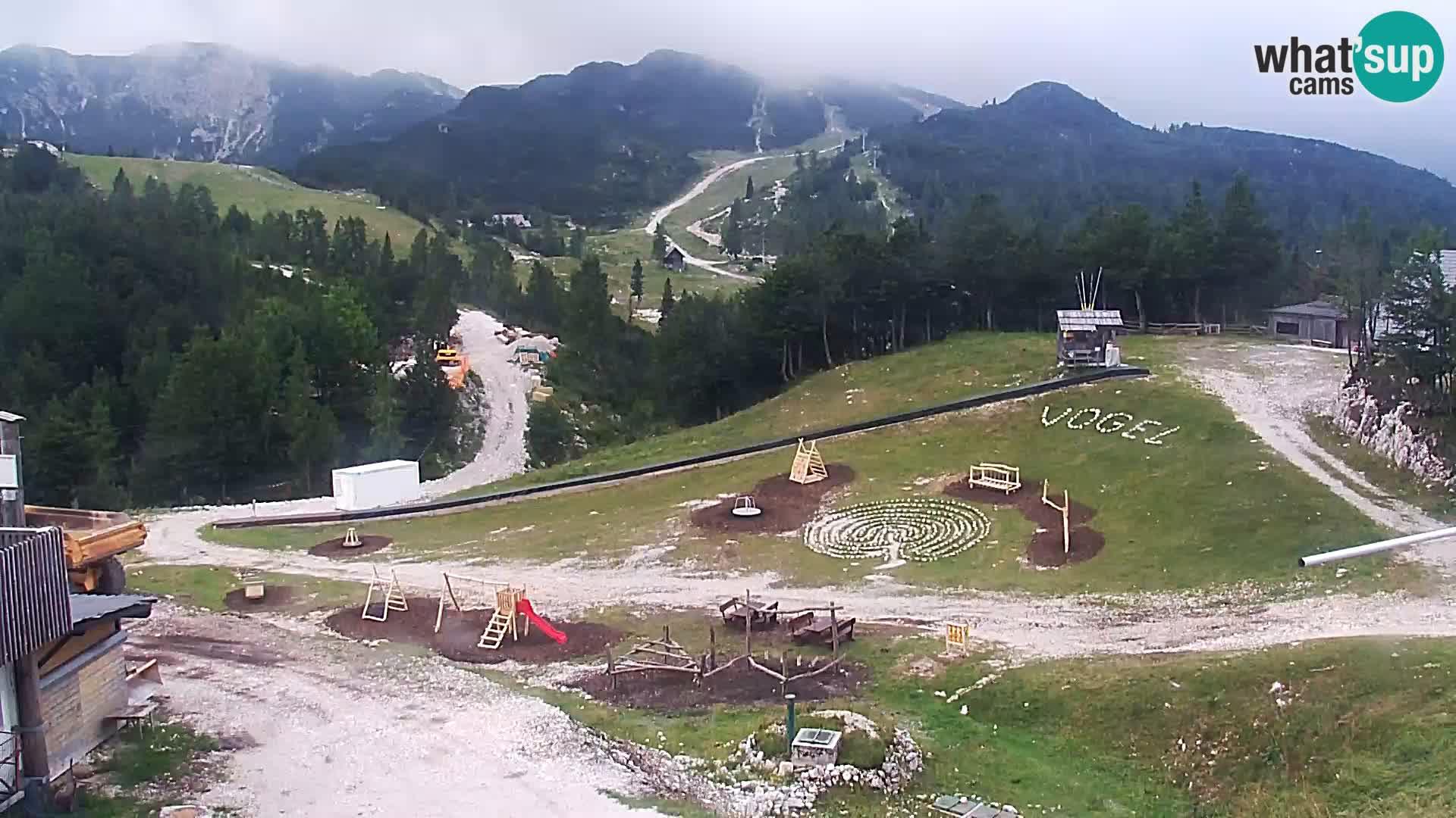 Webcam Skigebiet Vogel