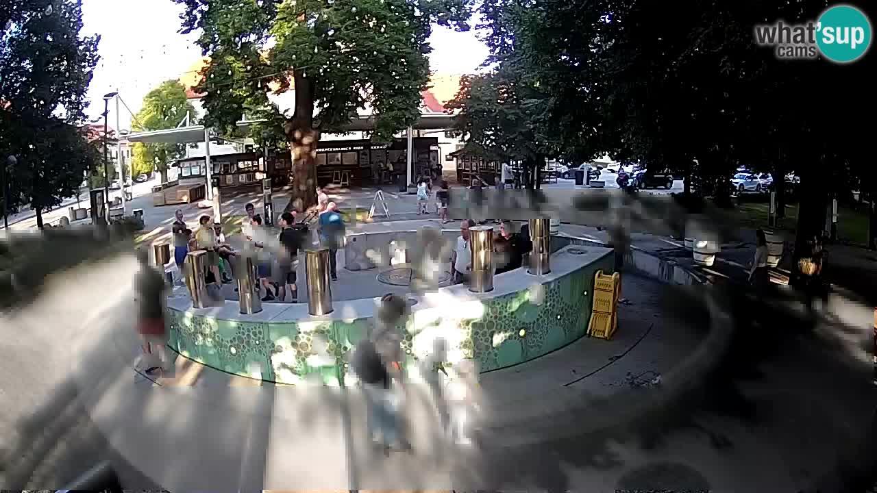 Fontaine à bière LIVE webcam – Or vert – Žalec