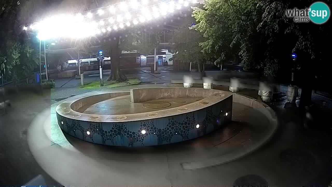 Camera en vivo Fuente de cerveza – Oro verde – Žalec