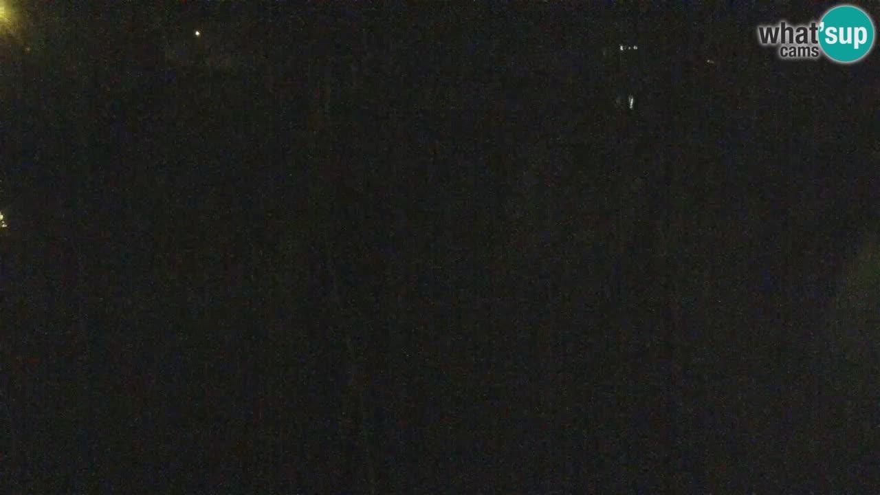 Schwarzweiße Vari Zoo Ljubljana webcam